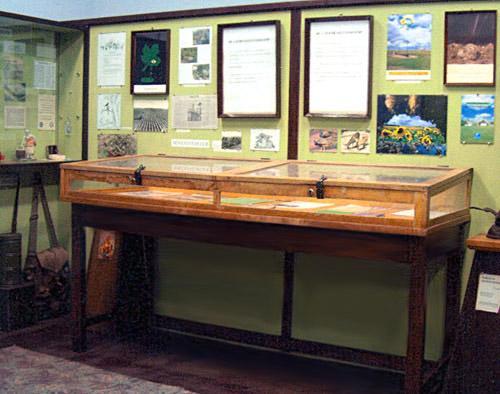 Kútmúzeum
